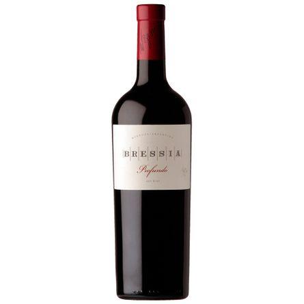 Profundo-2010-.-Blend-.-750-ml---Botella