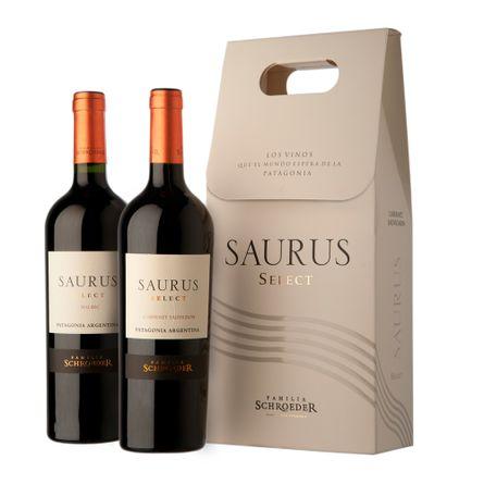 Saurus-Select-Malbec-Cabernet-Sauvignon-2-X-750-ml-Estuche-Botella