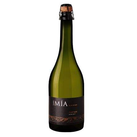Pampa-Mia-Blanc-de-Noir-750-ml-Espumante-Blanc-de-Noir-Botella