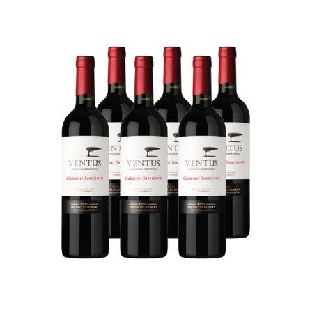Ventus-Varietal-.-Cabernet-Sauvignon-.-6-x-750-ml-Botella