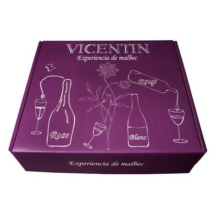 Estuche--VICENTIN-EXPERIENCIA-MALBEC-.-3-x-750-ml---Botella