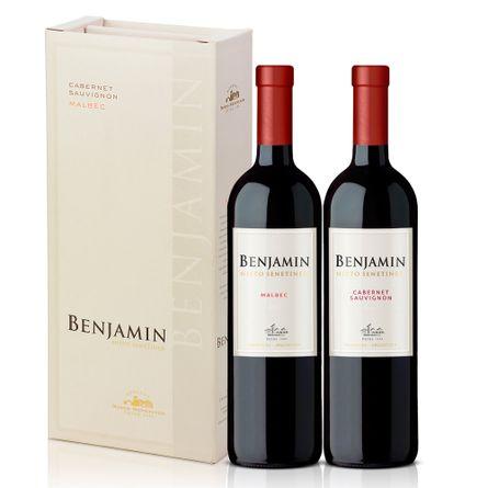 Benjamin-Malbec-.-Estuche-.-6-x-750-ml---Botella
