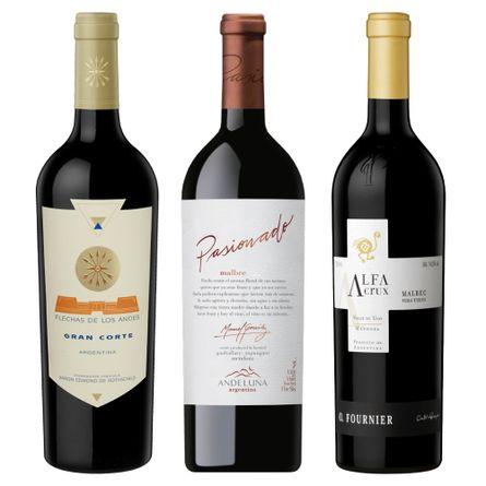 Pack-Valle-de-Uco-Premium-.-3-x-750-ml