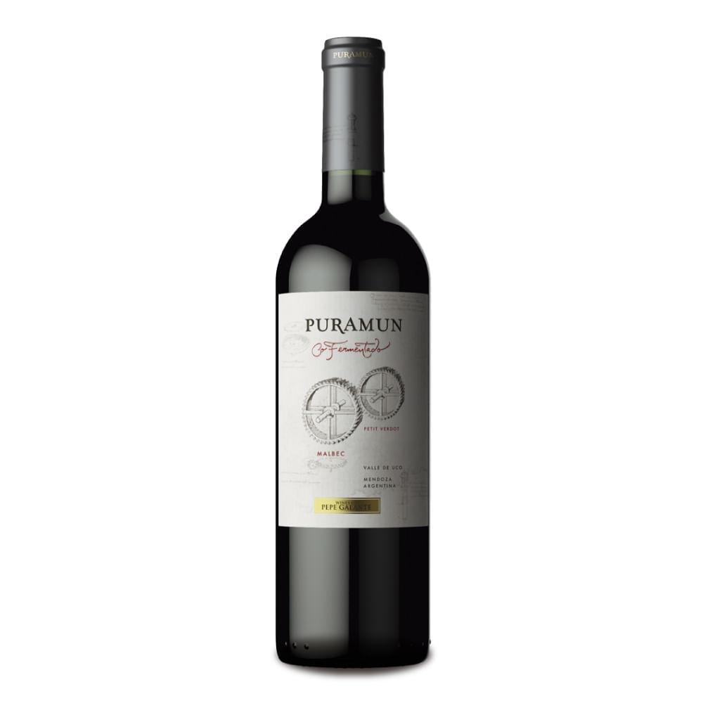 Puramun-Malbec---Petit-Verdot-Cofermentado.-750-ml