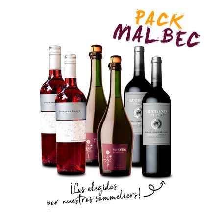 Experiencia-Malbec-I-.-6-x-750-ml---Pequeños-Productores
