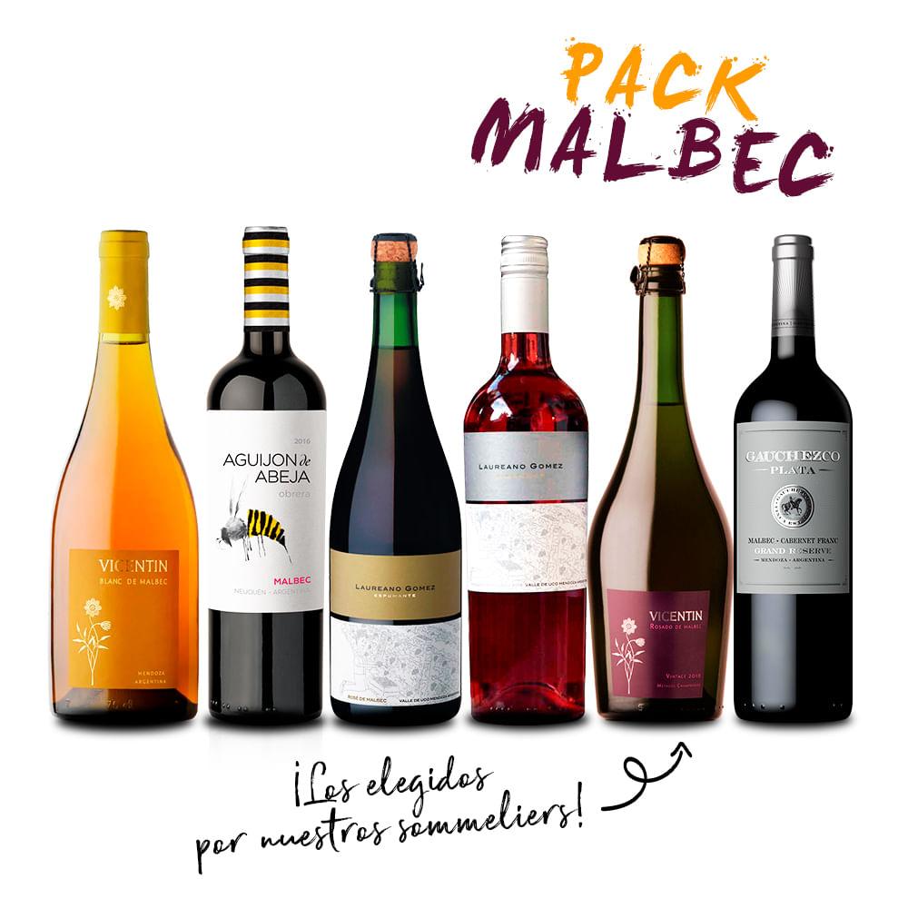 Experiencia-Malbec-II-.-6-x-750-ml---Pequeños-Productores