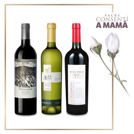 Comparti-con-Mama-II